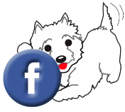 Like us on Facebook Grrreendog Grooming spa and daycare